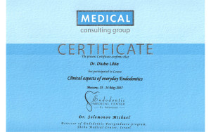 Сертификат дюбо копия