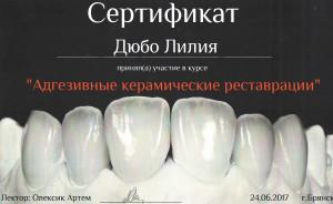 Сертификат дюбо11 копия